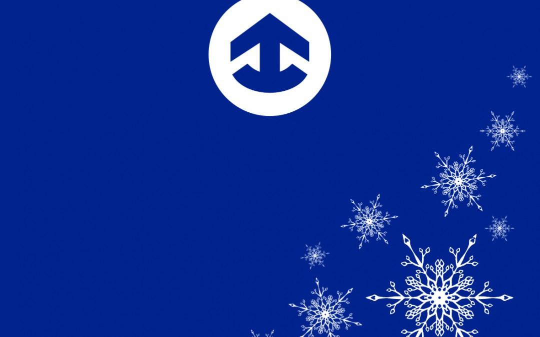 NAVIS wünscht ein frohes Weihnachtsfest