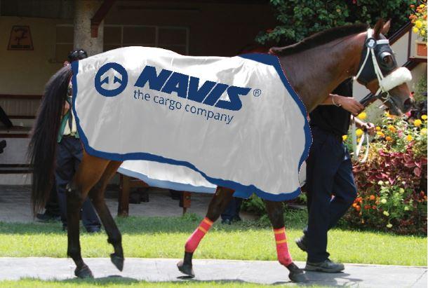 NAVIS News vom 11.11.2016