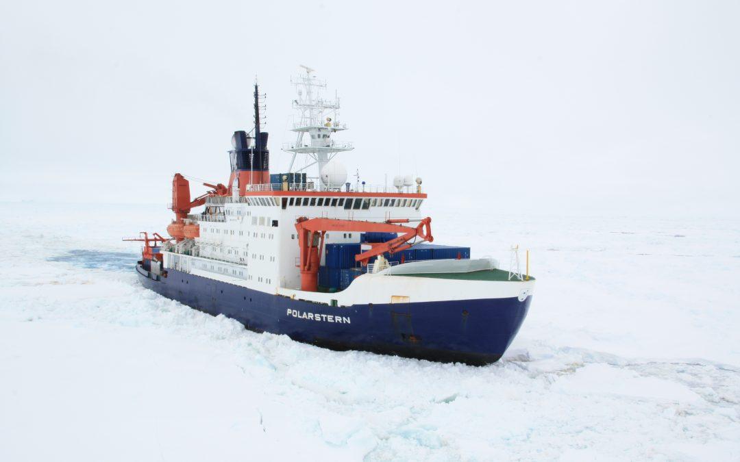Neueste NAVIS Segelliste KW 18 – 23/2020 online – Thema des Deckblattes:  Der Regenwald in der Antarktis